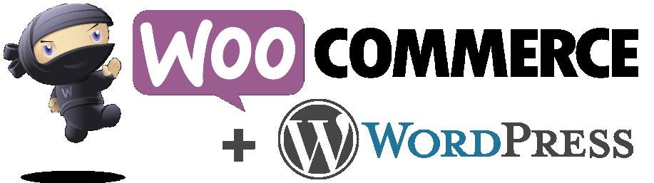 WooCommerce & WordPress Website Design