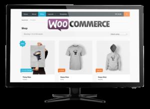 WordPress and WooCommerce Development